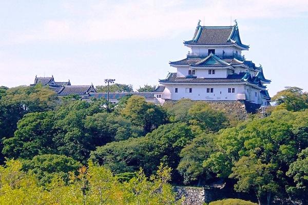 南海電車「和歌山観光きっぷ」の内容、値段、購入方法