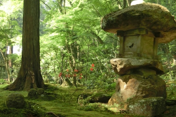 京都「大原」への行き方(アクセス)と観光にお得な切符