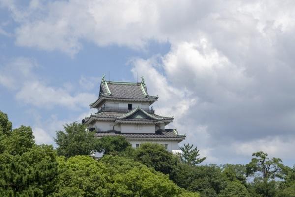 和歌山、高野山、白浜、熊野、勝浦方面へ電車・バスのお得な切符まとめ
