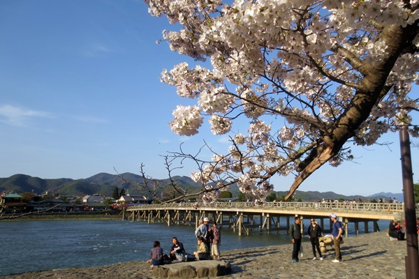 阪急「京都・嵐山1dayパス」の値段、発売期間、購入方法は?