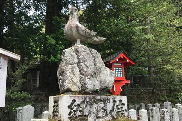 京都洛北・森と水のきっぷ