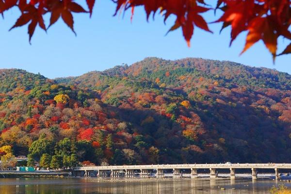 阪急乗り放題「京都・嵐山1dayパス」の内容、値段、発売期間、購入方法