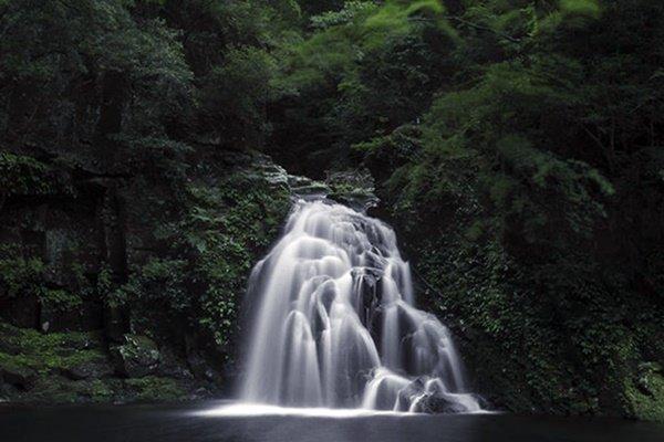 近鉄「赤目四十八滝・渓谷の自然探勝きっぷ」の内容、値段、発売期間、購入方法は?