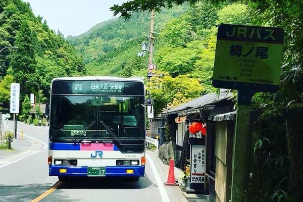 JR「西日本エリア高速バス乗り放題きっぷ」は路線バスも利用OK