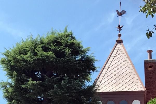 「KOBE(神戸)観光の日」に無料開放される施設