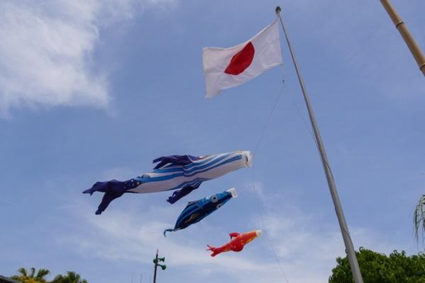 JR西日本乗り放題「どこでもきっぷ」の内容、値段、発売期間、購入方法、注意点