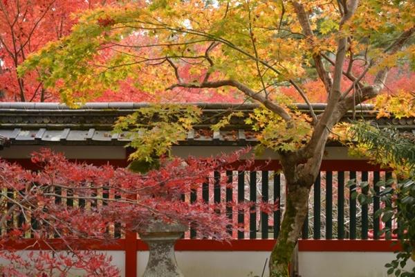 阪急電車の京都「いい古都チケット」の内容、発売期間、値段、購入方法